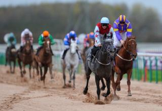 Southwell stage seven races on Tuesday