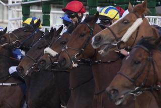 Timeform pick out three bets from South Africa on Sunday