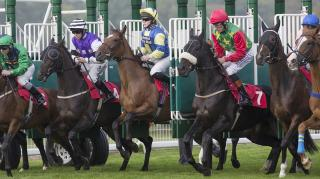 It's opening evening for racing from Ballybrit and Tony Keenan has previewed the card.