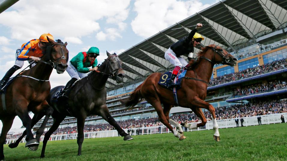 Best horse to bet on at ascot tomorrows betting tips and predictions