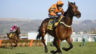 Thistlecrack takes aim at Gold Cup glory this season