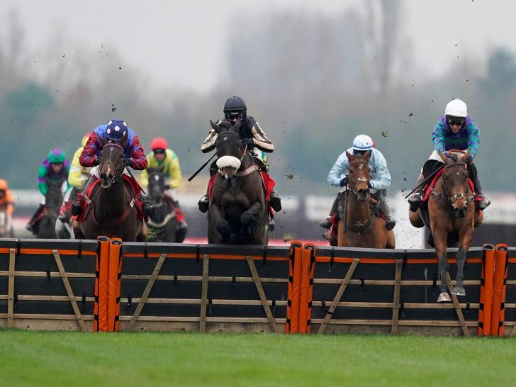 Thyne Hill, right, winning at Newbury in November