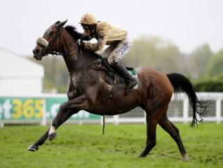 Can Tidal Bay (pictured) win the Betfair Chase at a big price?