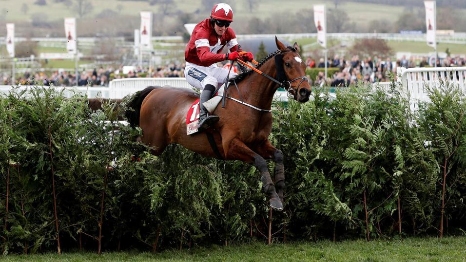 Tiger Roll Aintree Grand National