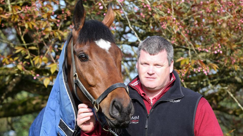 Gordon Elliott yard