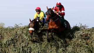 Grand National winner Tiger Roll
