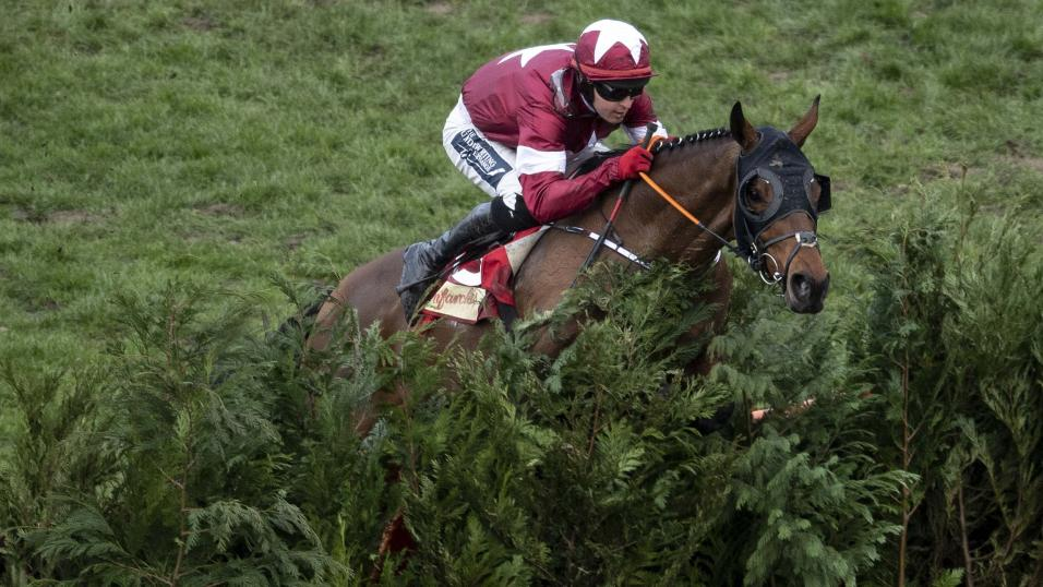 Tiger Roll is back at Aintree but will miss the National fences