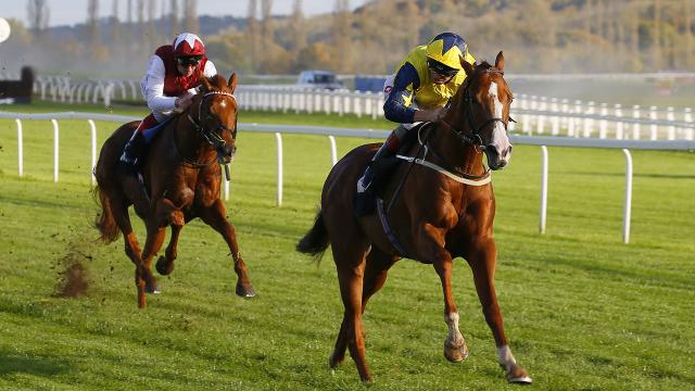 Cesarewitch 2021 betting tips bwin betting shop locator