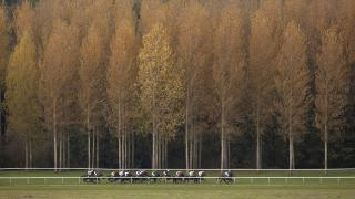 Towcester races in the heart of the Northamptonshire countryside