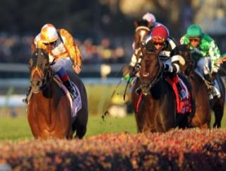 Timeform's US team have picked three bets on Friday