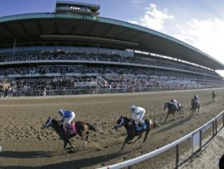 Timeform's US team pick out their three best bets