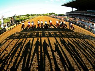 There are three bets from Belmont advised for tonight