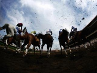 Timeform's US team pick out their three best bets for Friday