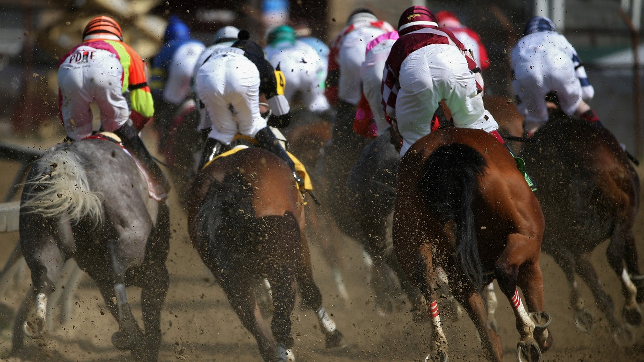 Investec derby betting keeneland track my sports bets
