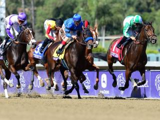Timeform's US team,provide you with three bets on Tuesday
