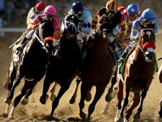 The Breeders' Cup at Santa Anita is now just a week away