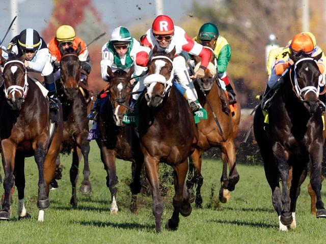 Timeform pick out three US bets on Monday