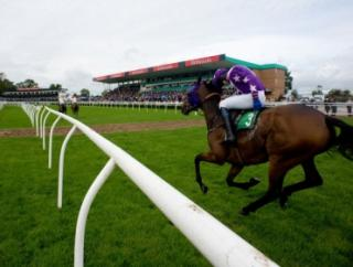 There's a big day of summer jumps at Uttoxeter