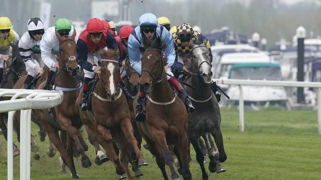 windsor horse race betting odds