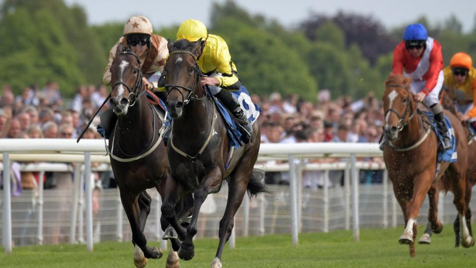 York race action