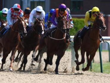 Timeform analyse the in-running angles at Wolverhampton