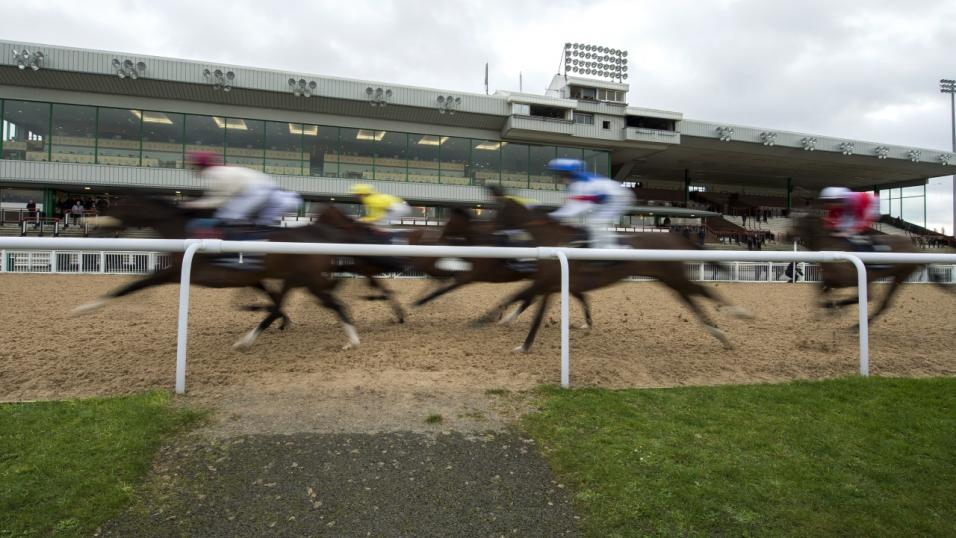 Horse betting tips wolverhampton homes gavle goat bettingadvice