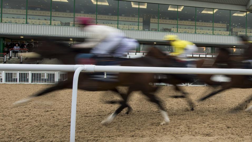 horse racing betting odds wolverhampton grand