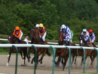 Supa Seeker runs at Wolverhampton this afternoon