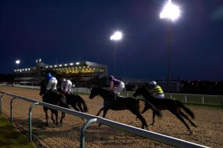 Alan's final selection Winslow runs under the floodlights at Wolverhampton