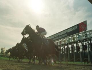 Friday's three bets come from Woodbine