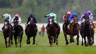There is racing at Haydock on Saturday evening