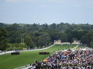 Two selections from Ascot for Tony Calvin on Saturday
