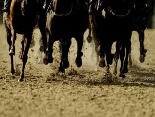 Timeform provide you with three tips from Meydan on Wednesday
