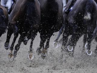 Timeform bring you the best bets from Jebel Ali on Friday