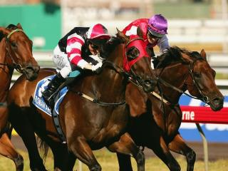 Simon Rowlands examines the statistics surrounding the impact of blinkers