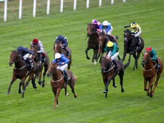 There is high-class Flat racing from Royal Ascot on Friday