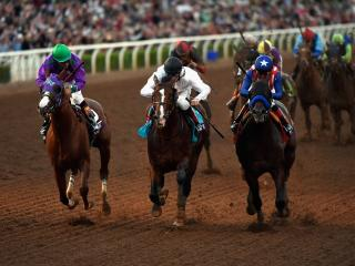 California Chrome (left) is set to have his final start in tonight's Pegasus World Cup