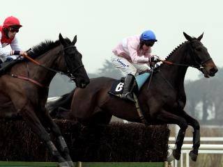 Los Amigos can win the National for Jim Dreaper