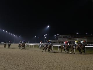 There is racing from Chelmsford on Thursday evening