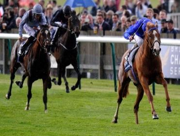 glory awaits 2000 guineas betting
