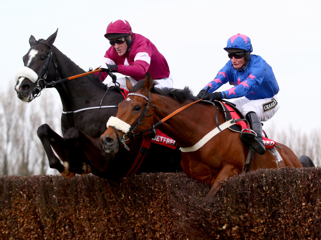 Don Cossack is the star on show at Down Royal on Saturday
