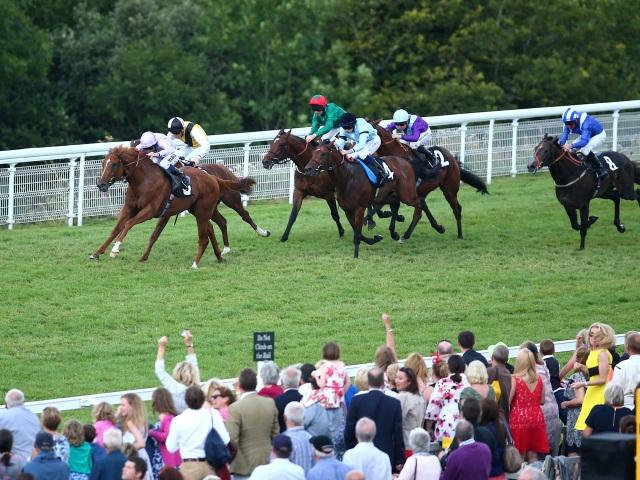 The Goodwood Mile Handicap is the big betting race at Goodwood on Friday