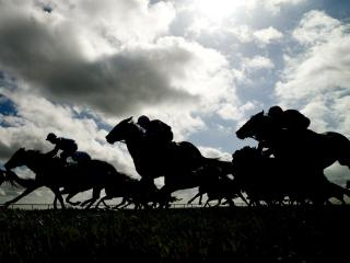Timeform have three bets from Limerick on Friday evening