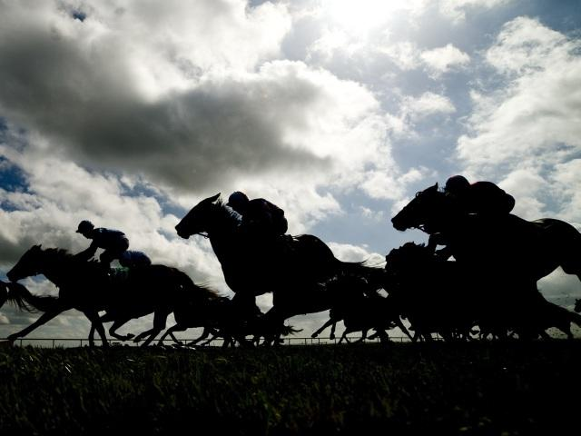 Timeform provide you with three selections at Cork