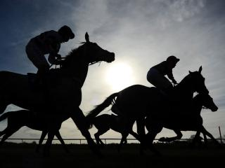 Timeform provide you with three bets from Tipperary