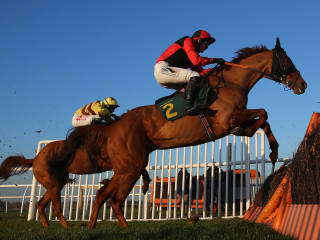 There is summer jumps racing at Newton Abbot on Tuesday evening
