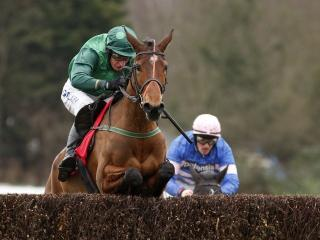 Gitane du Berlais is fancied to win at Fairyhouse