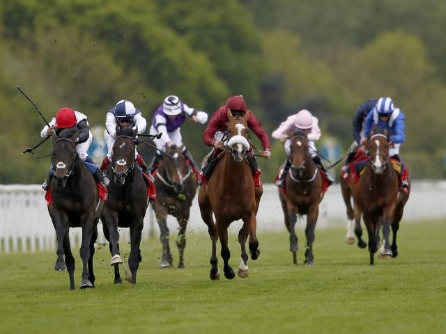 Jack Hobbs (second left) is expected to prove too good in the Champion Stakes