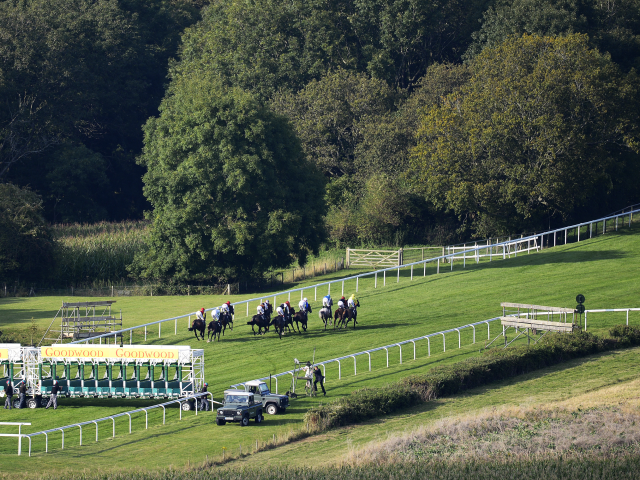 Goodwood is the venue for two of today's Follow The Money selections