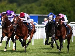 The Celebration Mile at Goodwood is the big race on Saturday